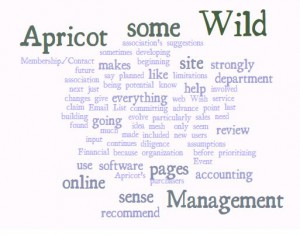 Word Cloud of Wild Apricot article